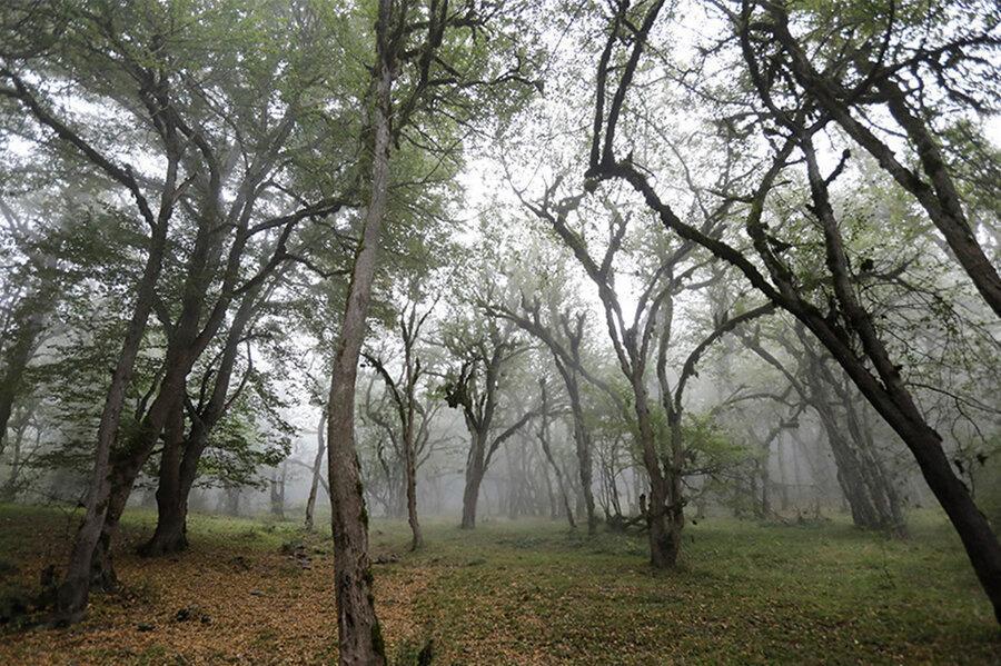 واکنش میراث فرهنگی مازندران به تخریب جنگل های هیرکانی برای انتقال آب ، ابهام در جهت خط لوله انتقال آب خزر به سمنان